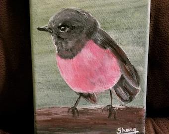5x7 Original Pink Robin Acrylic Painting