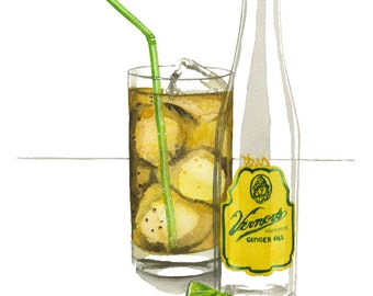 Vernors Ginger Ale Watercolor Illustration Print