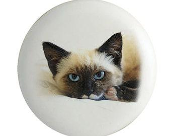 Siamese Kitty Cat Knob Ceramic Drawer Pulls Set of 2