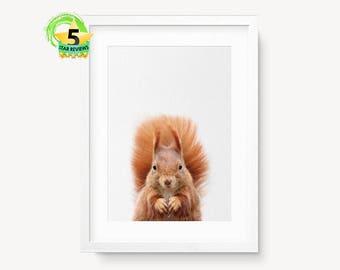 Écureuil imprimé bébé imprimés, écureuil murale, Art, Art mural bébé, Baby Room Decor, imprimés, Art animalier, pépinière Animal Print