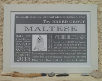 Maltese - Framed A4 Dog Breed Print - Gift for dog lovers - Dog breed traits & facts - Typography art dog prints