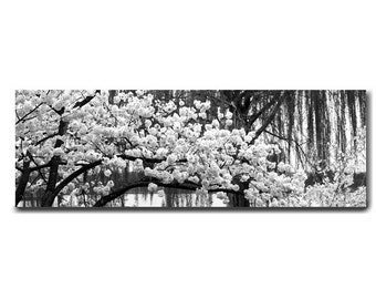 Black and white panoramic canvas, Cherry Blossom large wall hanging floral tree branch art over bed, spring nature home decor modern artwork