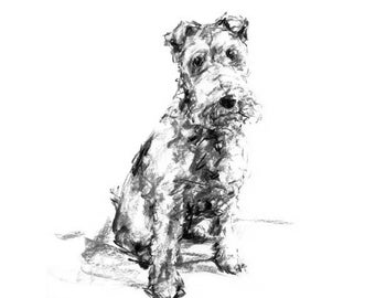 Fox Terrier Drawing - fine art dog print - fox terrier gift