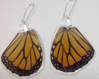 Real Butterfly Wing Earrings Monarch Butterfly Earrings Vintage Wings 1970's Butterfly Wings Butterfly Jewelry Butterfly Earrings