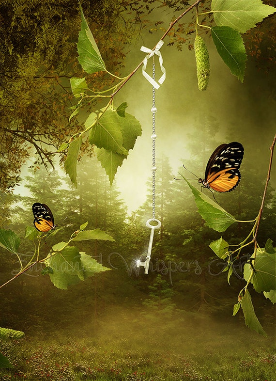 fantasy key and butterflies art print