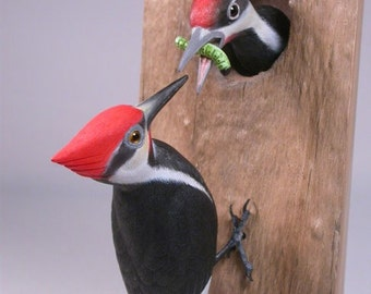 Pileated Woodpecker with a Baby  Hand Carved Wooden Songbird