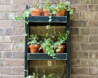 Beaune Wall Planter - Plant Pots Now Available - Hanging Planter | Shelf Planter | Hanging Shelves | Wall Succulent Planters