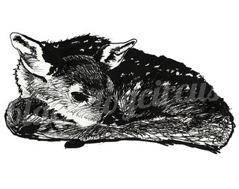 Deer Print from an Original Drawing on Fine Art Quality Recycled paper