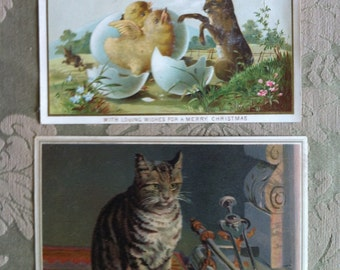 Victorian Christmas cards – Cat and Bunny with Chicks. c.1880