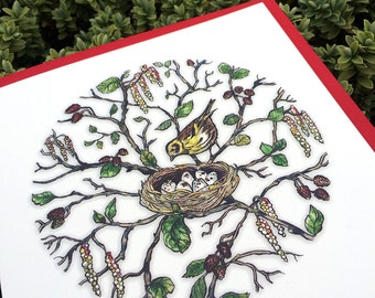 Bird in Nest Card. Mother's day card. British birds illustration. Mama card. Card for Mom. Bird Card. Card for Gardener. Card for Mum