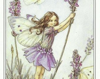 Lavender Fairy Cicely Mary Barker Flower Fairies Vintage Print 1995 Wall Art Nursery Decor Fairy Print Home Decor Print Fine Art