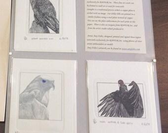 RAPTOR Inc. Fine Art Notecards by Amy Foltz