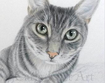 Cat Pet Portrait Hand-Drawn 11 x 14 Colored Pencil Art by Carla Kurt dog horse pet portrait