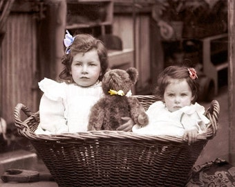 Two Little Girls in a Basket with Teddy Bear tinted photo print