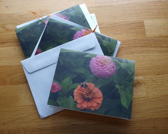 Zinnias and bee - Photo Notecard - Free Shipping
