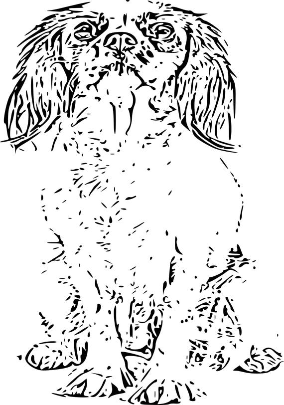 Adult Coloring Pages Cavalier King Charles Spaniel Art