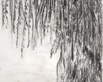 Weeping Willow Tree Charcoal Drawing