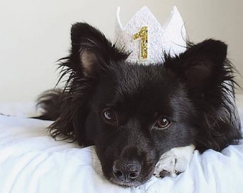 Dog Birthday Hat   Pet Birthday Crown of Glitter   Dog Birthday   Dog Lover Gift   Dog Clothes   Puppy Cat Kitten Pig Birthday Hat   White