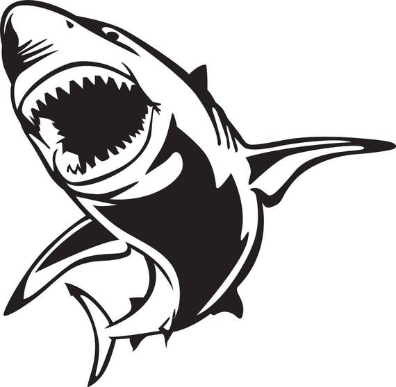 SHARK SVG FILE