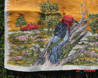 Vintage Red Headed Woodpecker Dish Towel  17 - 1003