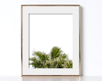 Palm Tree Art Vintage Vibe Digital Download Printable Art Beach Decor Vacation Home Decor Zen Art Soothing Designs Contrasty Print Green