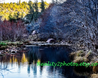 River Photo, Tree Wall Art, Colorful Nature Photo, Lanscape Print.