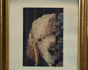 Dog Peeking Behind the Curtain