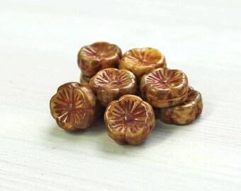 6 Czech Glass Beads 12mm Hawaiian Pansy Flower Golden Brown Tones - CB207