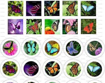 Butterflies, Digital Collage, Instant Download, 1 inch, Circles, Squares  / 40