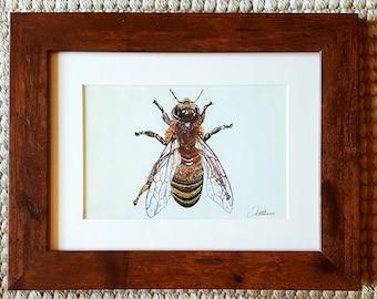 Bee Print Bee Painting Honey Bee Picture Drone Bee Artwork Honey Bee Wall Art Bee Decor Bee Original- 'Solo Honey Bee' a bee gift choice