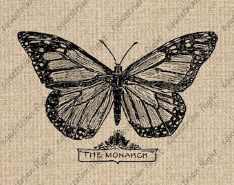 INSTANT DOWNLOAD Butterfly Images Antique Monarch Butterfly Graphics Vintage Digital Sheet Download Iron On Transfer 300dpi HQ