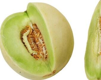 Heirloom Organic 30 Seeds Honeydew Melons Honey Dew Vegetable Edible Fruit Seeds F11