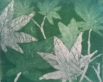 Fine art etching, Japanese maple leaves, Acer, Art for sale, Gifts for her, Hand pulled print, Green wall art prints, Original artwork