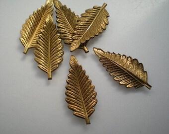 6 small brass fern leaf charms
