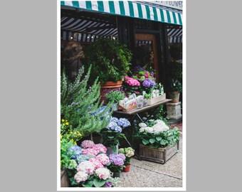 boston city print, beacon hill shop, historic boston street, cobblestone street, new england photo, bedroom wall art, entryway art, wall art