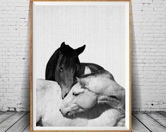 Horse Print, Horses Photo, Black and White Photography, Wall Art, Modern Wall Print, Horse Wall Art, Equestrian Art, Modern Minimal Photo