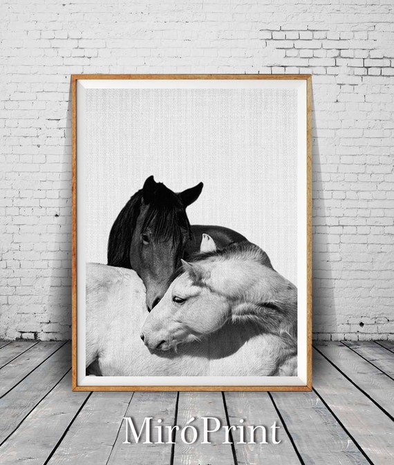 Horse print horses photo black and white photography wall