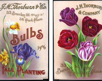 BCB Puzzles Hand Cut Wooden Jigsaw Puzzle -J.M. Thornburn & Co. 1906 Seed Catalog -TOOFER PUZZLE