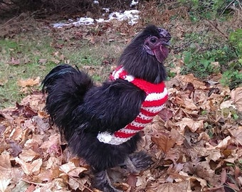 Chicken sweaters, chicken sweater, chickens, hens, crochet, chicken clothing, red, white