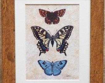 Schmetterlings-Print Butterfly Painting Schmetterling Wand Art Schmetterlinge Framed - schöne Sepia Kulisse mit Schmetterling-Trio. Fabelhafte Geschenk