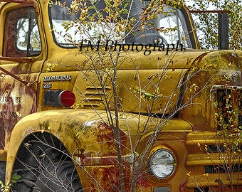old truck, old truck photography, rusty truck, truck photography, rusty truck photography, fine art photography, truck print, rusty photo