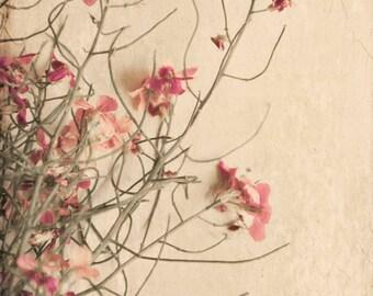wild flowers floral bathroom decor nature print home decor