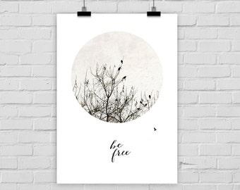 "fine-art print ""BE FREE"" photo birds"