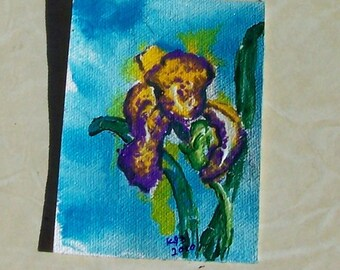 Aceo Original  acrylic painted Iris on canvas yellow base and purple edges on turquoise background