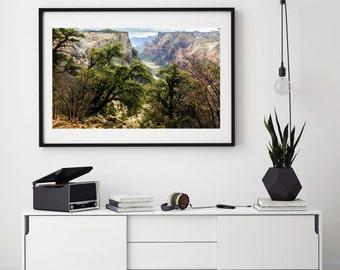 Sandstone Canyon   Red Orange Yellow Purple Stone Rock   Zion   Fine Art Photography   polychromatophil   Photo   River Tree   Warm Colors