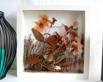 Dried flowers in the frame
