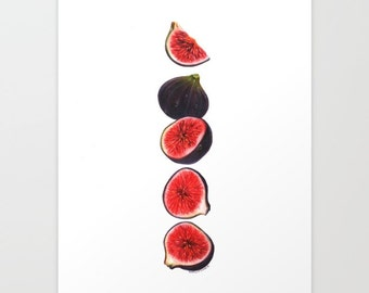 Figs Print