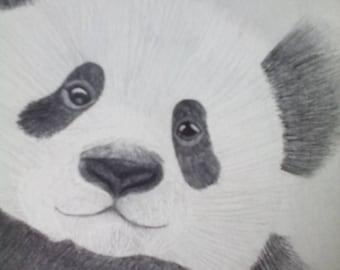 Fluffy the Panda