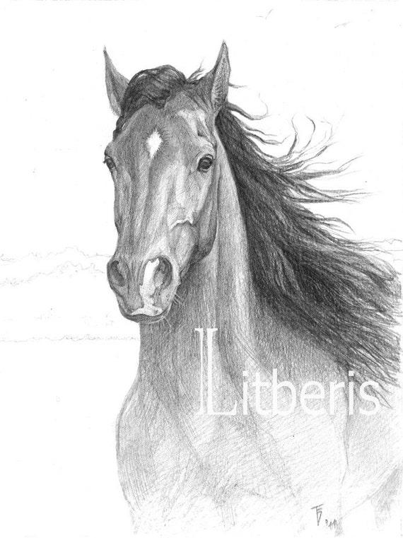 articoli simili a cavallo di disegno a matita matita