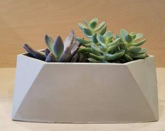 Concrete Planter, Succulent Planter, Housewarming Gift